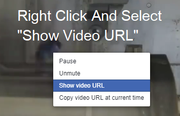 show video url in FB